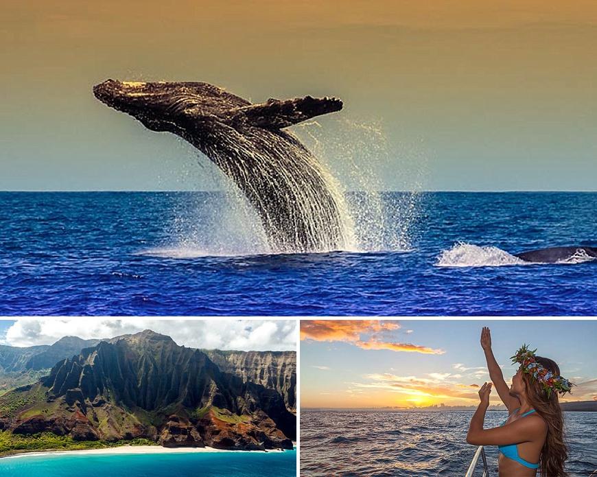Kauai Holo-Holo Boat Tours